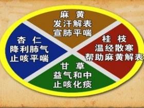 麻黄汤的组成,原文解析,麻黄汤方歌方解,功效与作用