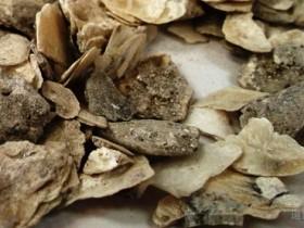 桂枝甘草龙骨牡蛎汤加减辨治心悸的临床经验