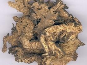 霉菌性肠炎,长期慢性腹泻的中医治疗经验
