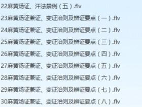 【李赛美.王宝华.万晓刚】伤寒论讲座视频教程全集(132讲)