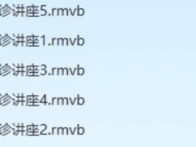 王守志手诊医学视频讲座全集