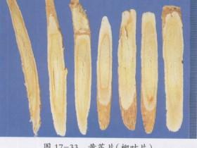 黄芪桂枝五物汤组成,方歌方解,医案分析,功效与作用