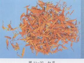 红花(藏红花)的功效与作用及禁忌,中药红花图片