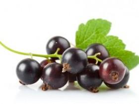 黑加仑的营养价值及功效与作用