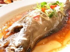 龙利鱼的营养价值_功效与作用_龙利鱼的做法大全