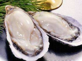 生蚝的营养价值,生蚝的功效与作用