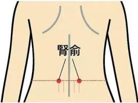 肾俞的准确位置图,肾俞穴的功效与作用
