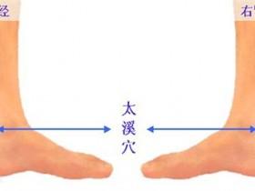 太溪的准确位置图,太溪穴的功效与作用