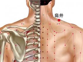肩井的准确位置图,肩井穴的功效与作用