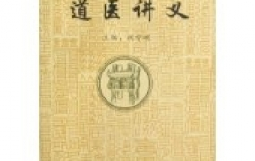《道医讲义》PDF电子书下载