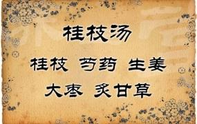 桂枝汤医案解析