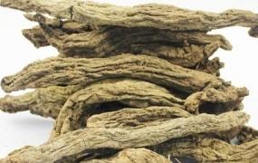 玄参的作用与功效,玄参的食用方法,玄参的运用