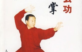 《武当玄功太极掌》PDF电子书下载