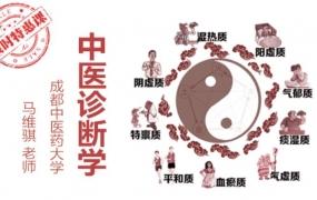 马维骐中医诊断学教学视频全集(80讲)