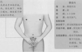 阴交的准确位置图,阴交穴的功效与作用