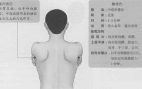 肩贞的准确位置图,肩贞穴的功效与作用