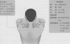 肩中俞的准确位置图,肩中俞穴的功效与作用