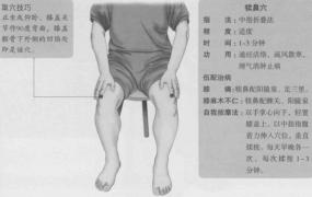 犊鼻的准确位置图,犊鼻穴的功效与作用