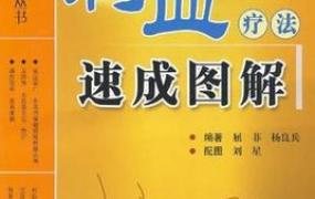 《刺血疗法速成图解》PDF电子书下载