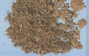 夜明砂的功效与作用,夜明砂的副作用及禁忌,中药夜明砂图片