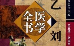 《唐宋金元名医全书大成》 全20册PDF电子书