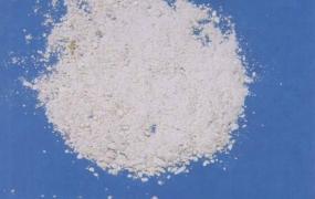 海蛤壳的功效与作用,中药海蛤壳(粉)图片