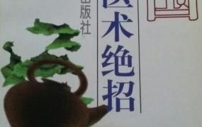 《中国民间医术绝招(妇科部分)》PDF电子书