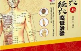 董氏奇穴与十四经穴临证治验PDF电子书下载