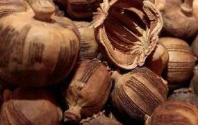 罂粟壳的功效与作用及禁忌,中药罂粟壳图片
