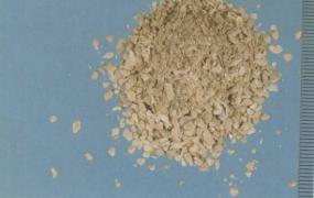 牡蛎的功效与作用及禁忌,中药生牡蛎图片