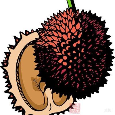 榴莲含有丰富的蛋白蛋和脂类,对机体有很好的补养作用,是良好的果品类营养来源