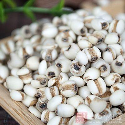 薏米有增强免疫力和抗炎作用