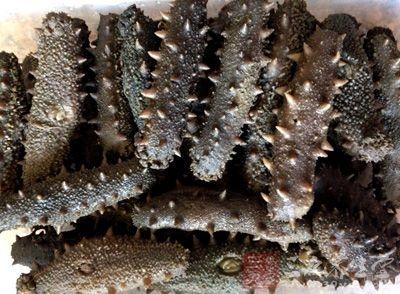 海参中含有丰富的酸性粘多糖和精氨酸