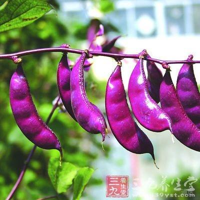 扁豆中所含的淀粉酶抑制物在体内有降低血糖的作用
