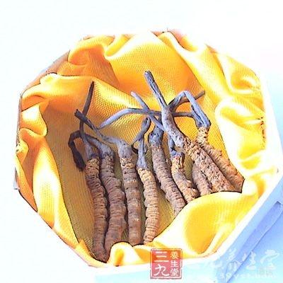 冬虫夏草是现在很多人都熟悉的药物