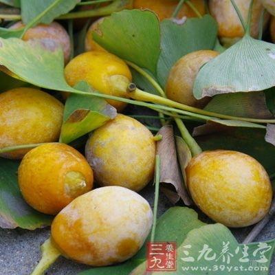 白果为银杏科植物银杏的种子