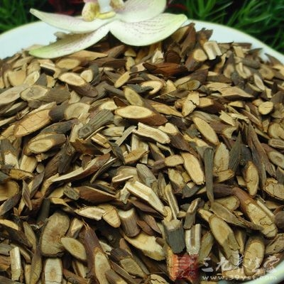 桂枝用于风湿痹痛、胃寒腹痛、经闭、痛经