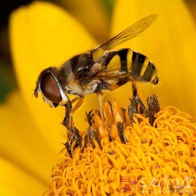 用花粉作面膜能收到很好的美容效果