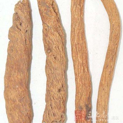 质硬韧,不易折断,断面显片状纤维性,皮部浅棕,木质黄白