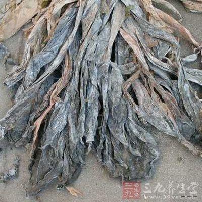 昆布是一种含碘量很高的海藻