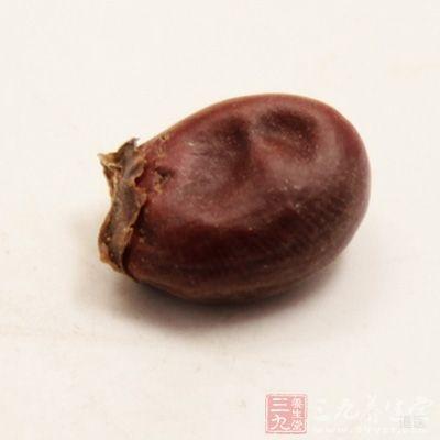荔枝核3克