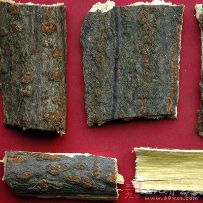 夜合树(去粗皮,取白皮,锉碎,炒令黄微黑色)200克
