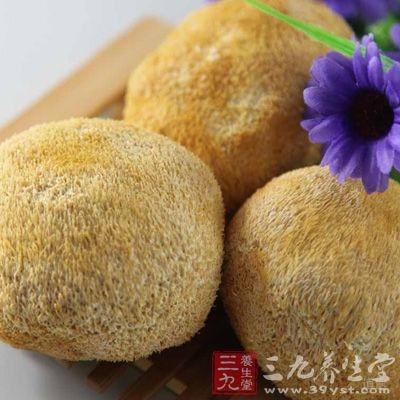 猴头菇具有健胃,补虚,抗癌,益肾精之功效