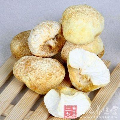 猴头菇是我国著名的八大山珍之一