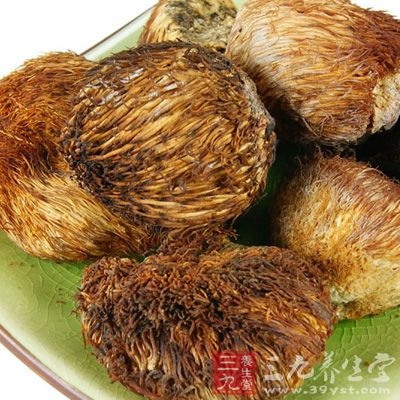 猴头菇中含有多种氨基酸和丰富的多糖体,能助消化,对胃炎、胃癌、食道癌、胃溃疡、十二指肠溃疡等消化道疾病的疗效令人瞩目