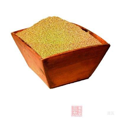 高血压能吃小米