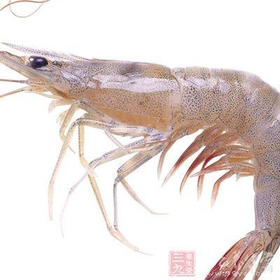 海虾100g、穿心莲400g
