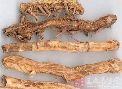 知母的干燥根状茎为著名中药