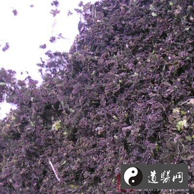 处方:紫背浮萍(取大者洗净,晒干)