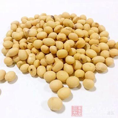 大豆是含铁量较高的一种食物